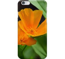 Orange Poppies iPhone Case/Skin