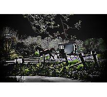 Amish Traveler Photographic Print