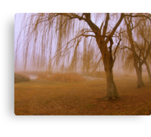Winter Willows Canvas Print