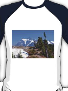 Spring in the Mountains T-Shirt