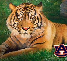 War Eagle by Terry Huey