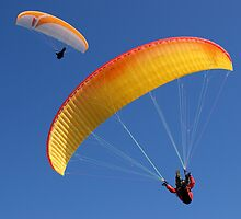 Paragliders Over Westbury by Jackie O.
