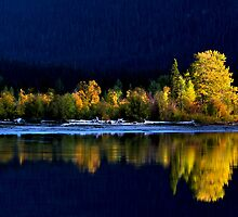 Moose Lake, reflections, in fall. Jasper National Park, Alberta, Canada. by photosecosse /barbara jones