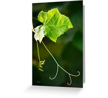 Green Grape Vine Greeting Card