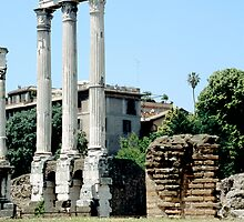 Ruins Of Temple Of Castor and Pollux, Rome, Italy by hojphotography