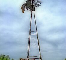Old Historic Windmill by Glenna Walker