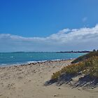 On The Sea Shore - Shoalwater by lezvee