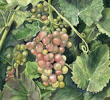 Winery Tour by Jane Kielt