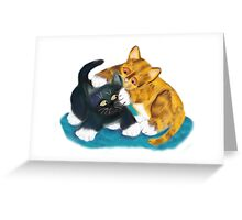 Two Kittens Wrestle Greeting Card