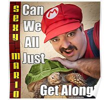 SexyMario MEME - Can We All Just Get Along? Poster