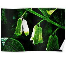 Stirring Magic in the Green Garden Poster