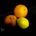 Oranges & Lemon by Susan E. King