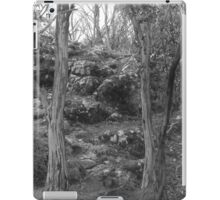 Camels Hump - black and white  iPad Case/Skin