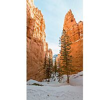 Peek-A-Boo Loop – Bryce Canyon National Park, Utah Photographic Print