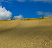 Normandy Field and Clouds by AmyRalston