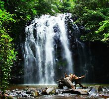 Tropical North Queensland Waterfall by frangelico