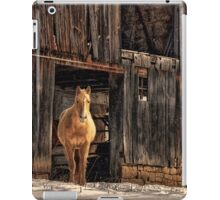 Hello Sweetheart iPad Case/Skin