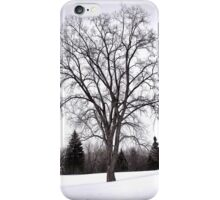Tree in Landscape, Early Spring with Snow  iPhone Case/Skin