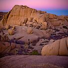 Purple Sunset at Joshua Tree by boehmgraphics
