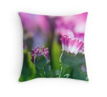 Windowbox.  Throw Pillow