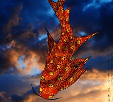 Flying Fish  001 by Roydon Johnson