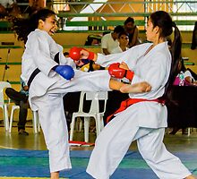 jka-3519__KARATESTA by JhaMesSports
