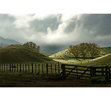 Rolling Hills of New Zealand Photographic Print