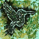 Hummingbird by Mark Gauti