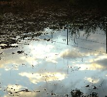 Reflected fence and sky by BonnieH