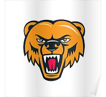 Grizzly Bear Angry Head Cartoon Poster