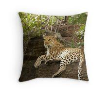 Leopard Female Throw Pillow