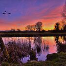 Stour Sunset by AntonyB