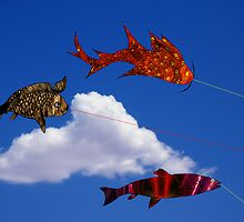 Flying fish with Single Cloud by Roydon Johnson