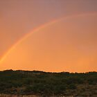 Colorado Rainbow by Andrea Jehn Kennedy