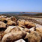 pandana beach, brisbane, queensland, australia by Loreto Bautista Jr.