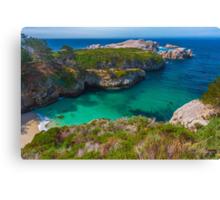 Big Sur Point Lobos State Park China Beach Canvas Print
