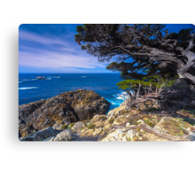Big Sur Point Lobos State Park, Point Lobos Canvas Print