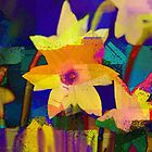 Chalk Blocks Daffodils by Darlene Lankford Honeycutt
