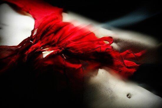 Fleeting flamenco by Louise Cooke