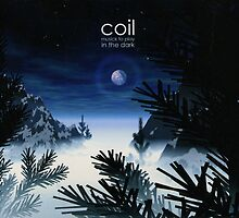 Coil - Musick To Play In The Dark by SUPERPOPSTORE