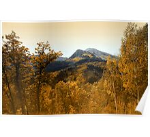 Silver and Gold, Wasatch Mountains Poster