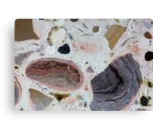 Miocene Canvas Print