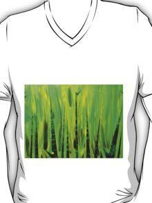 Big Bamboo T-Shirt