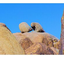 Rock eater too Photographic Print