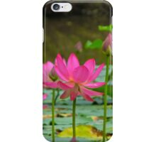 On Lotus Pond iPhone Case/Skin