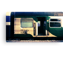 night train to cairo Canvas Print