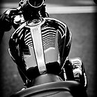 Who is Harley Davidson 2 by David Petranker
