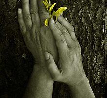 Primavera by lastgasp