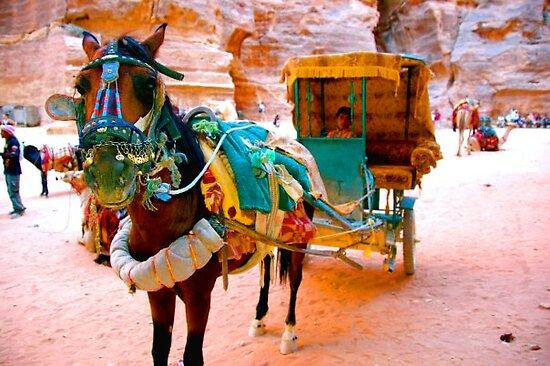 Jordanian Carriage by Brandon Myles Osman