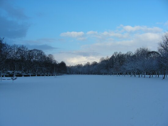 Snow on the Golf Course by brittle1906